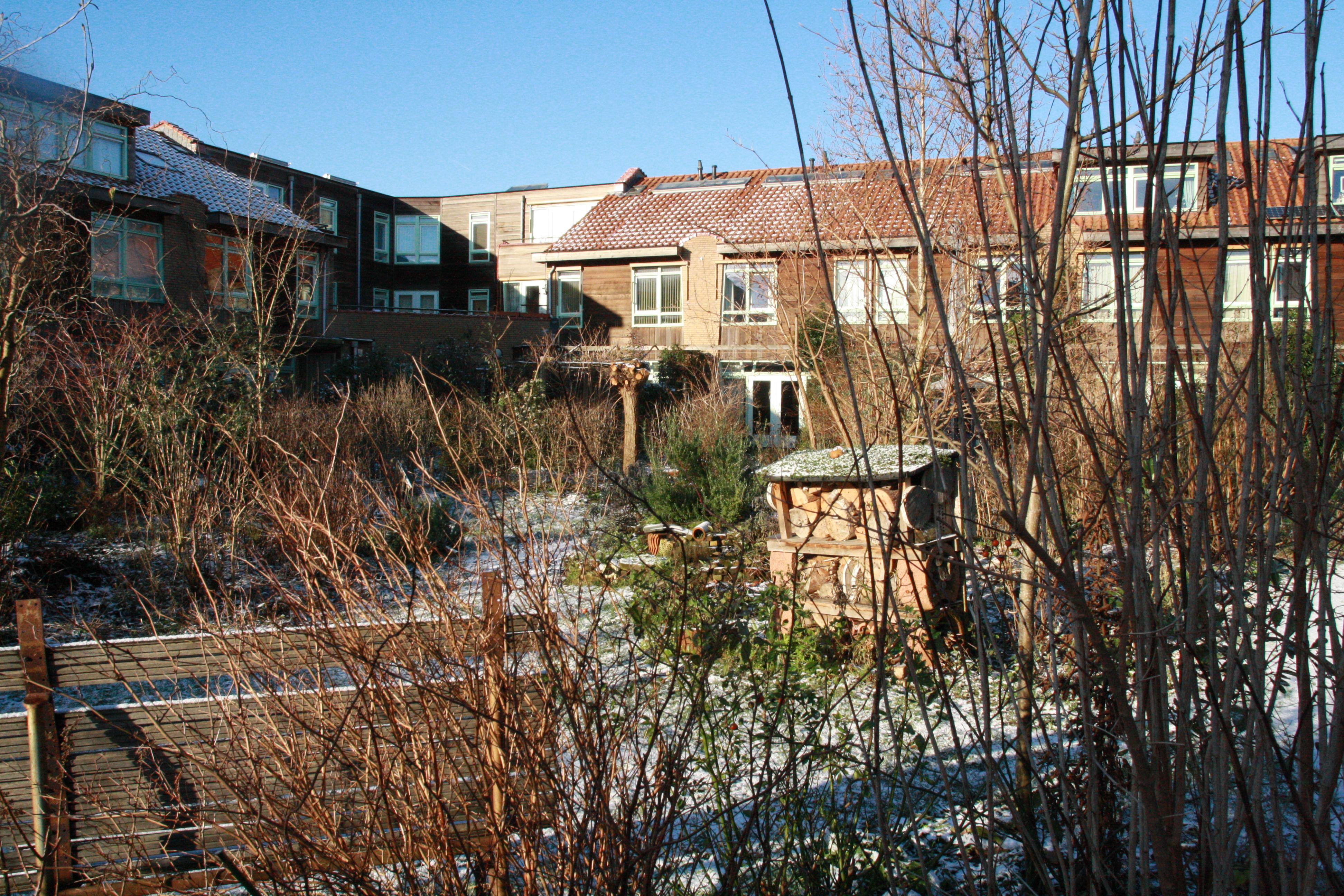 Achterhof Winter 2016