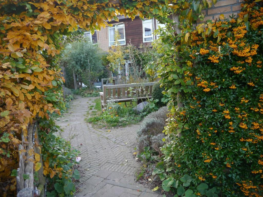 Herfst 2015 in de Buitenhof